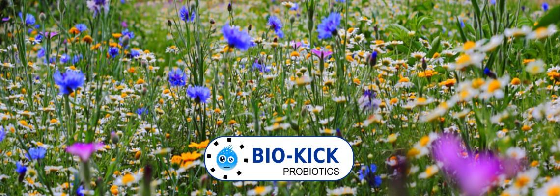 Bio-Kick